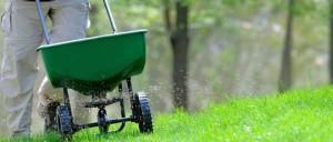 Fox Lawn Fertilising Services NSW