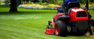 Lawn Mowing Sydney