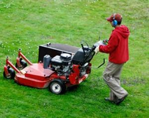 Lawn Edging Services Sydney
