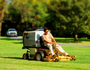 Lawn Edging Services Sydney