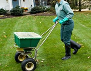 Garden Services Sydney