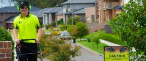 Lawn Care Services in NSW
