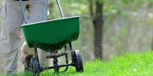 Lawn Mowing Wodonga