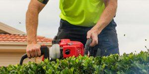 Gardening Services Albury