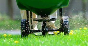 Lawn Fertilising Services Sydney