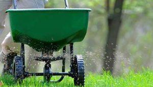 Garden Weed Spraying Sydney