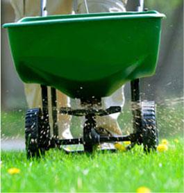 Lawn Weed Spraying Sydney
