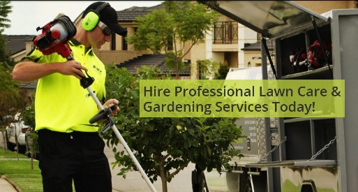 Gardening Services Forster