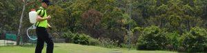 Lawn and Garden Bug Spraying Sydney