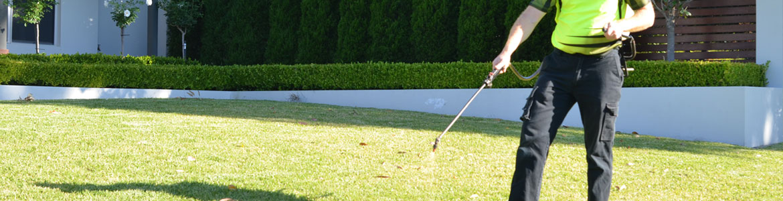 Lawn & Garden Weed Spraying